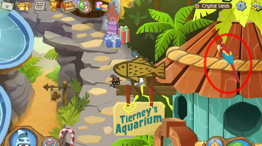 Image of: Jamaa Macaw Ourgemcodes Animal Jam Crystal Sands Journey Book Locations Ourgemcodes