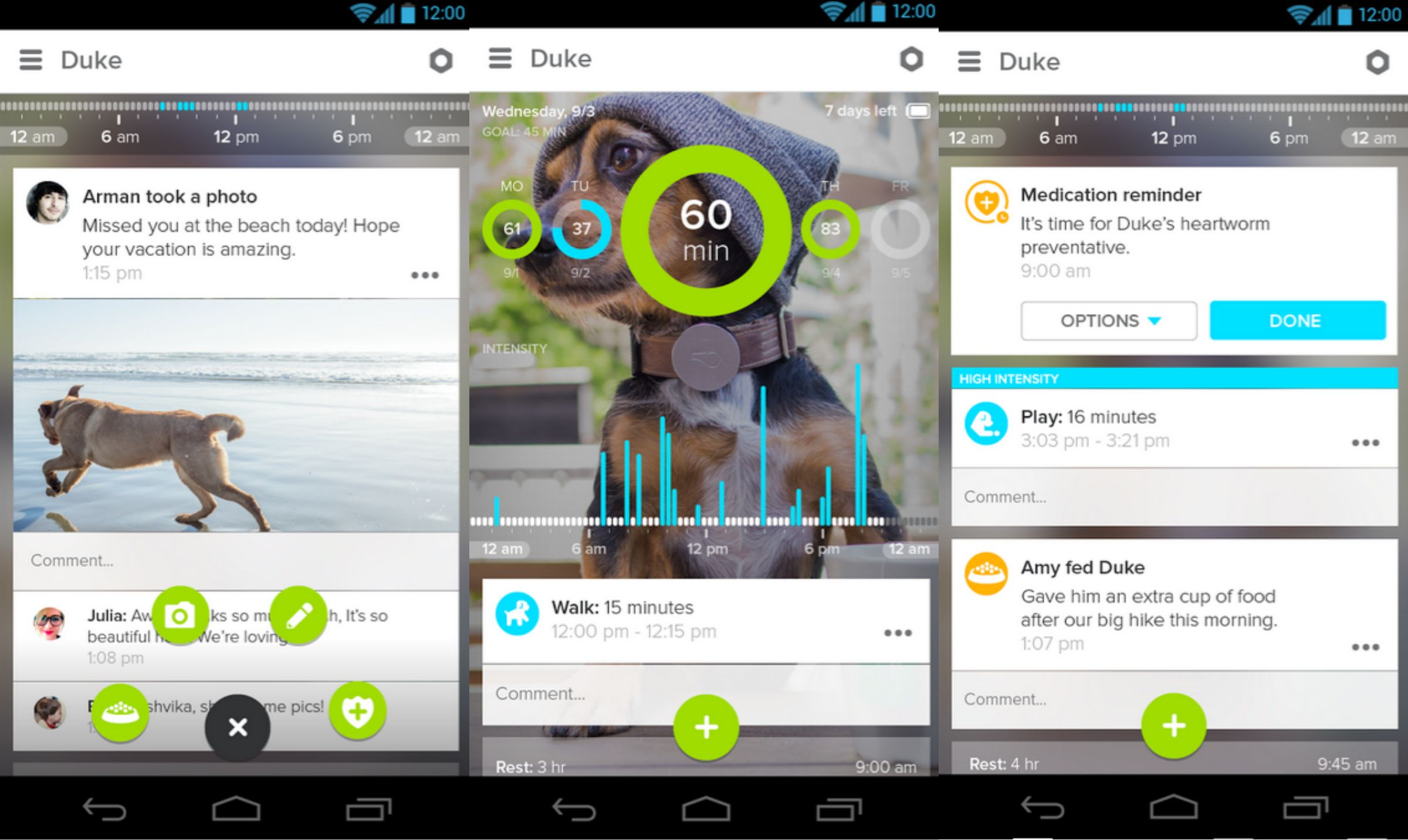whistle app for dogs is a wearable collar so you can track your pets