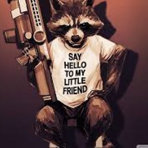CaptainRacoon420