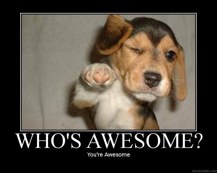 youreawesomedog